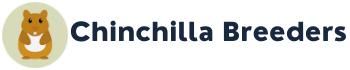 Your Chinchilla Pet Care Resource